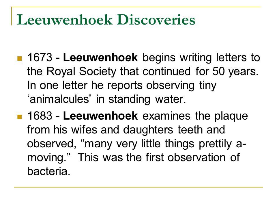 Leeuwenhoek Discoveries