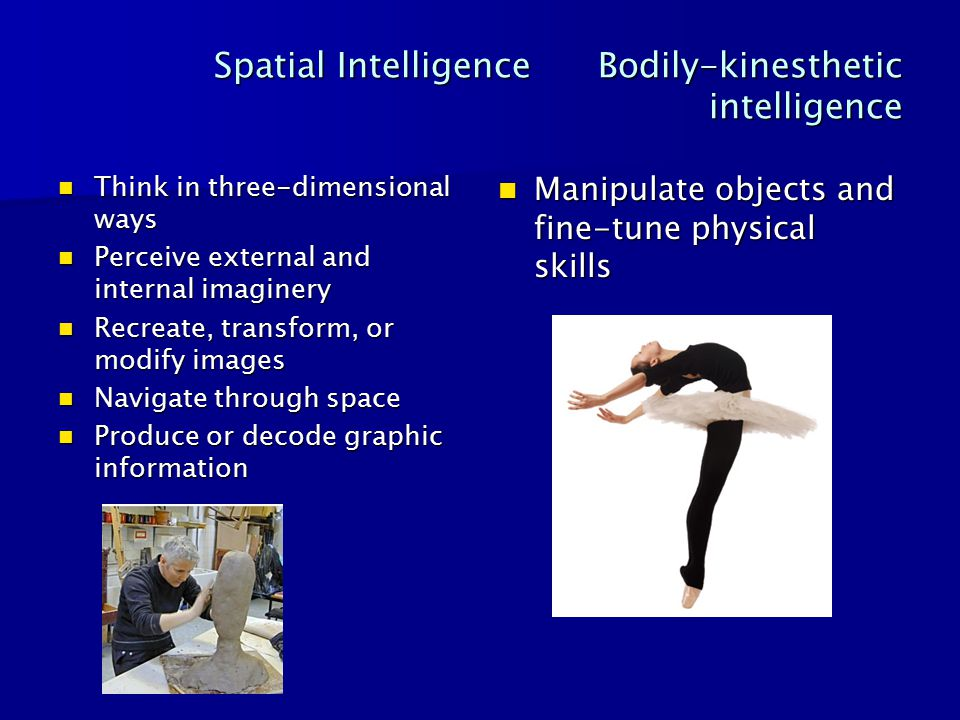 Spatial Intelligence Bodily-kinesthetic intelligence