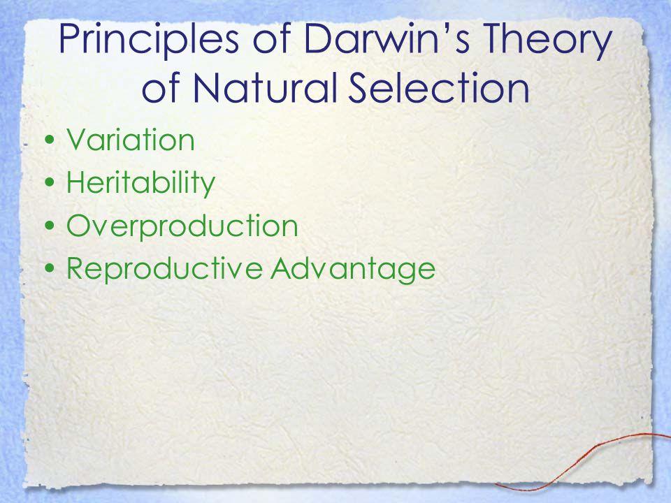 Principles of Darwin's Theory of Natural Selection