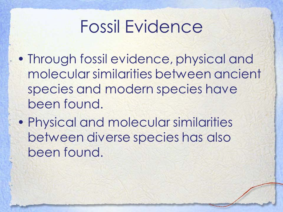 Fossil Evidence Through fossil evidence, physical and molecular similarities between ancient species and modern species have been found.