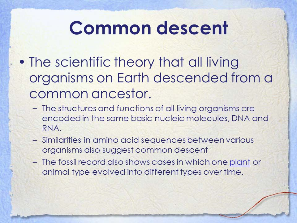 Common descent The scientific theory that all living organisms on Earth descended from a common ancestor.