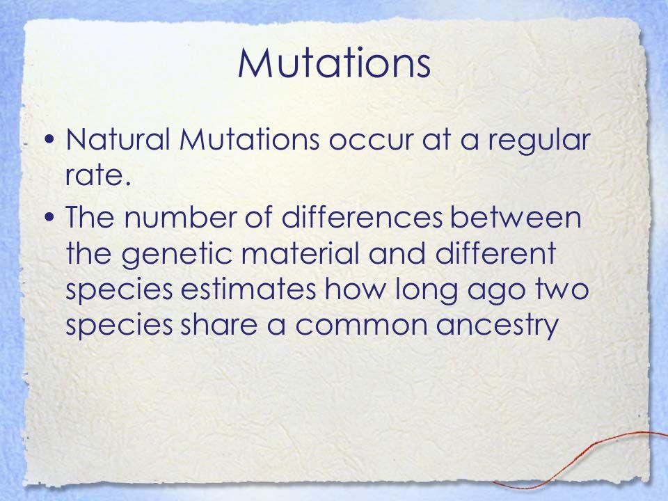 Mutations Natural Mutations occur at a regular rate.