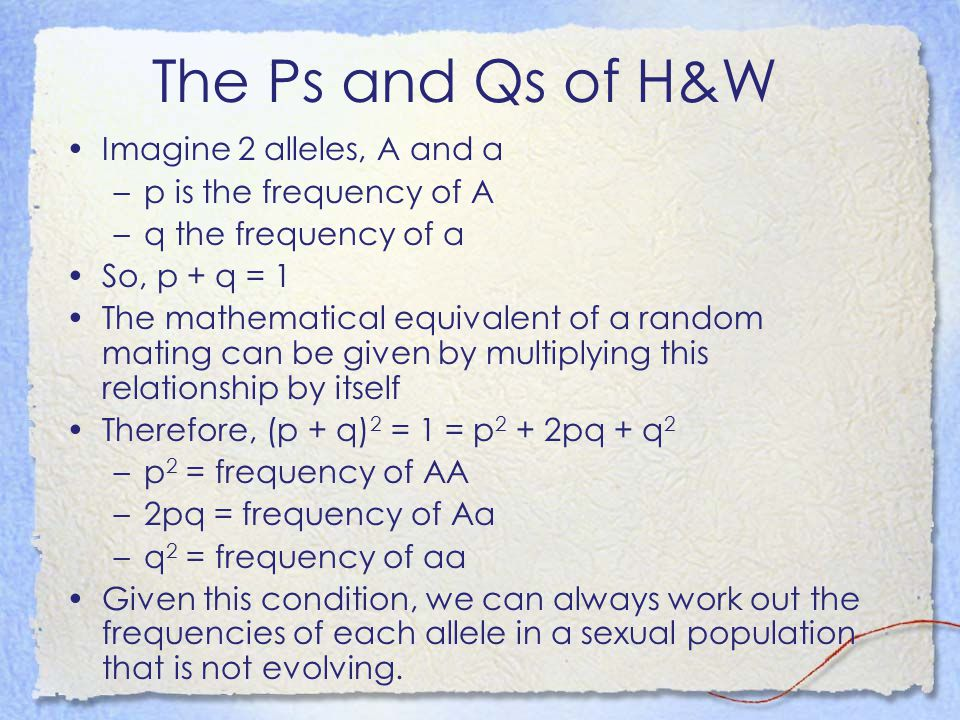 The Ps and Qs of H&W Imagine 2 alleles, A and a