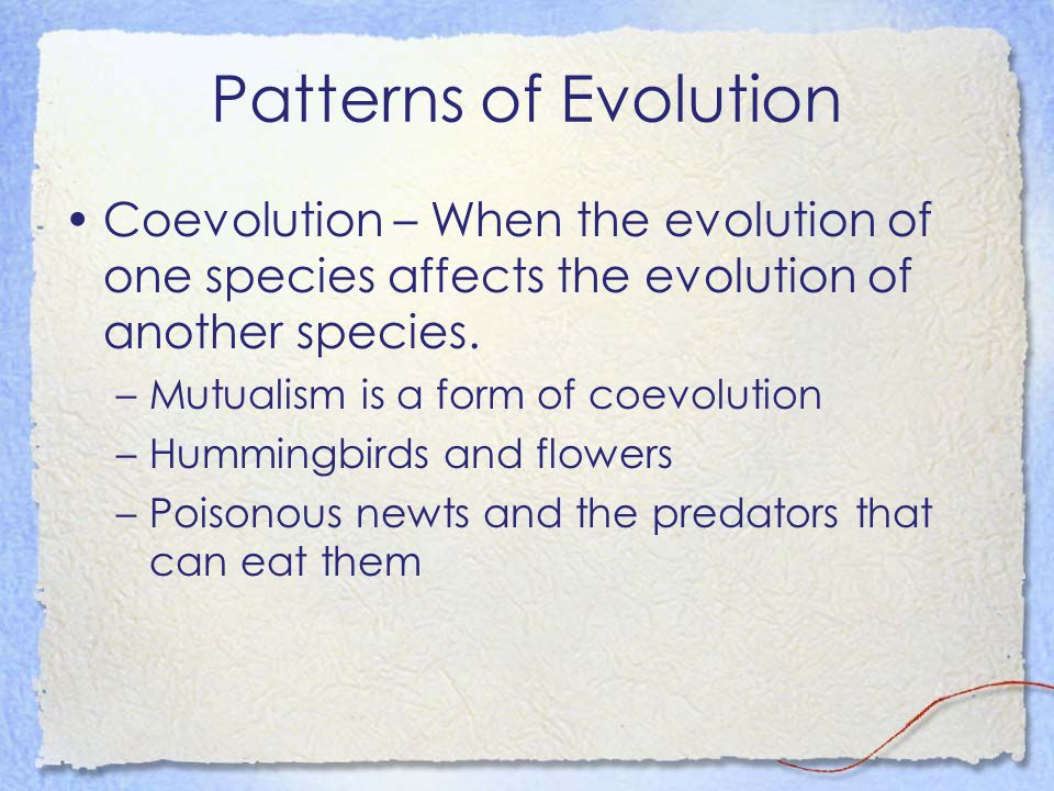 Patterns of Evolution Coevolution – When the evolution of one species affects the evolution of another species.