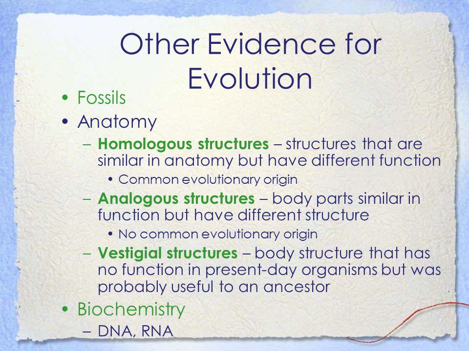Other Evidence for Evolution
