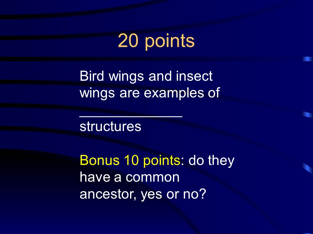 20 points Bird wings and insect wings are examples of _____________ structures.