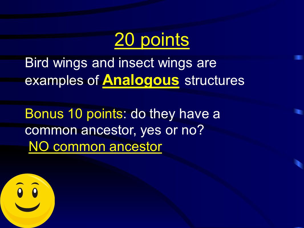 20 points Bird wings and insect wings are examples of Analogous structures. Bonus 10 points: do they have a common ancestor, yes or no