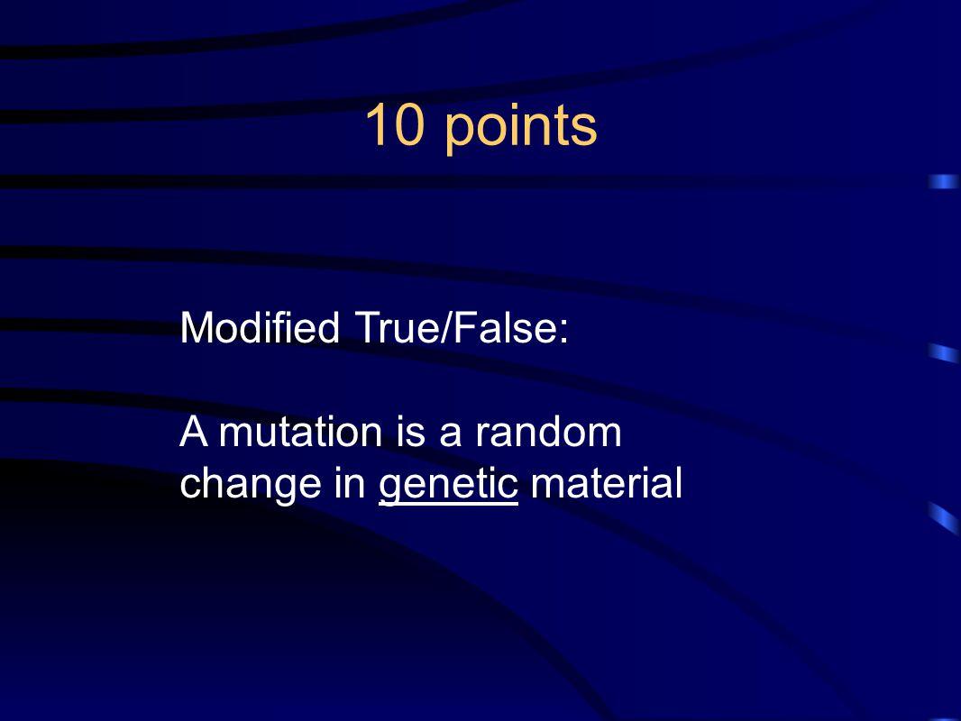 10 points Modified True/False: