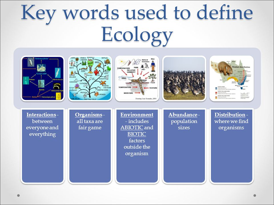 Key words used to define Ecology