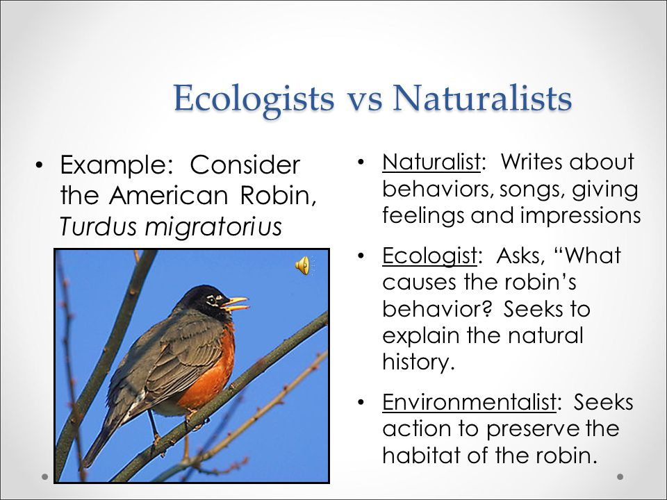 Ecologists vs Naturalists