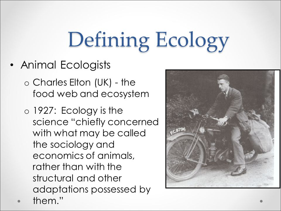 Defining Ecology Animal Ecologists