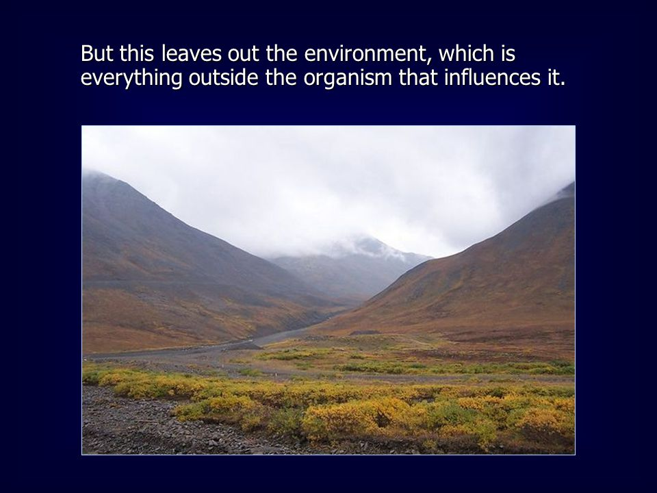 But this leaves out the environment, which is everything outside the organism that influences it.
