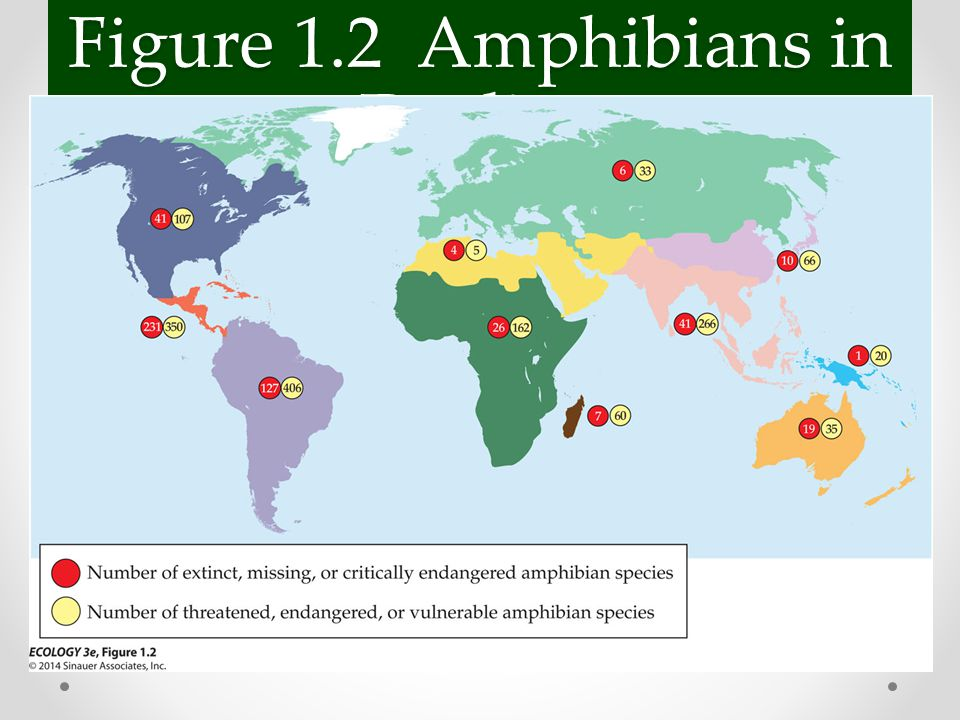 Figure 1.2 Amphibians in Decline