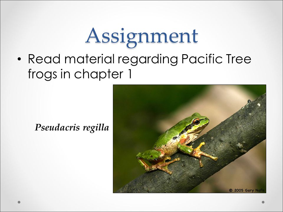 Assignment Read material regarding Pacific Tree frogs in chapter 1