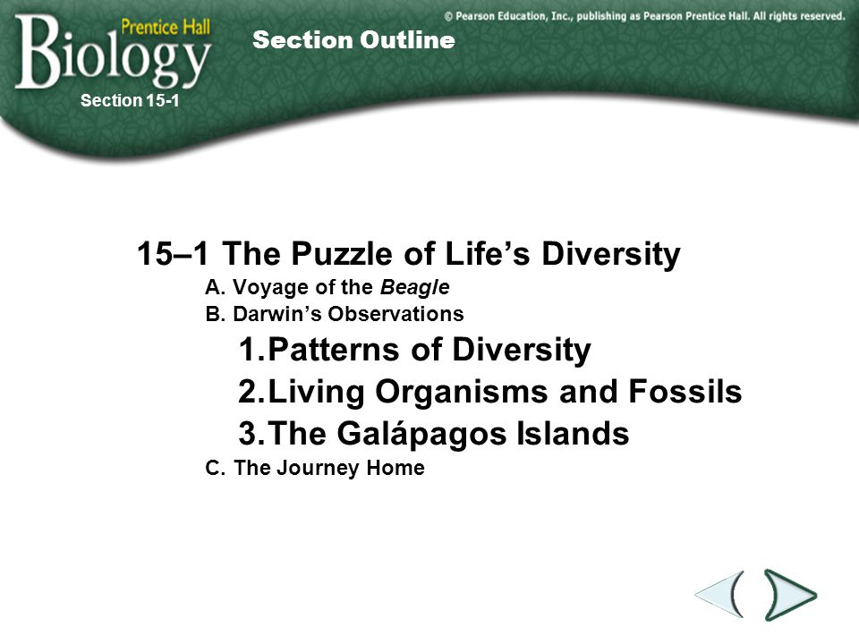 15–1 The Puzzle of Life's Diversity 1. Patterns of Diversity