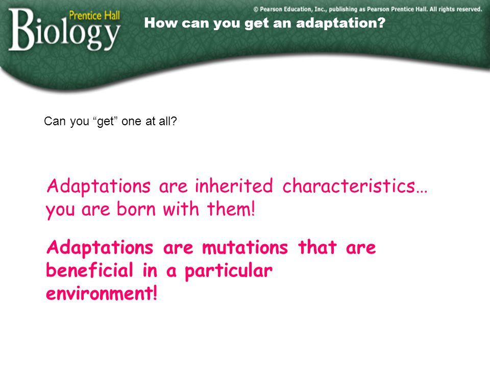 How can you get an adaptation
