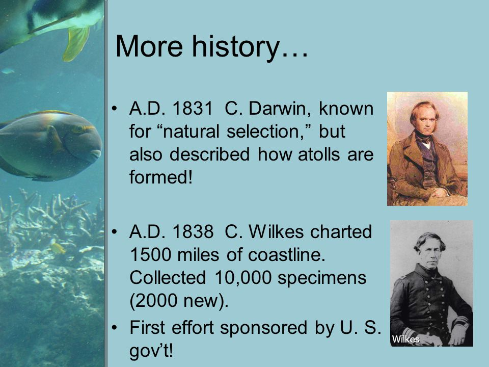 More history… A.D. 1831 C. Darwin, known for natural selection, but also described how atolls are formed!