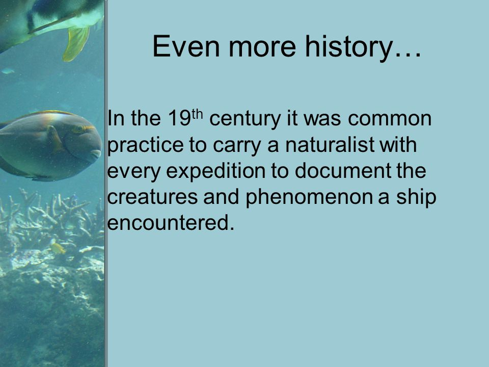 Even more history…