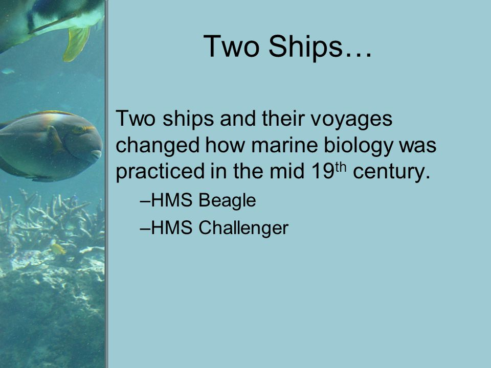Two Ships… Two ships and their voyages changed how marine biology was practiced in the mid 19th century.