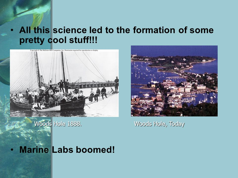 All this science led to the formation of some pretty cool stuff!!!
