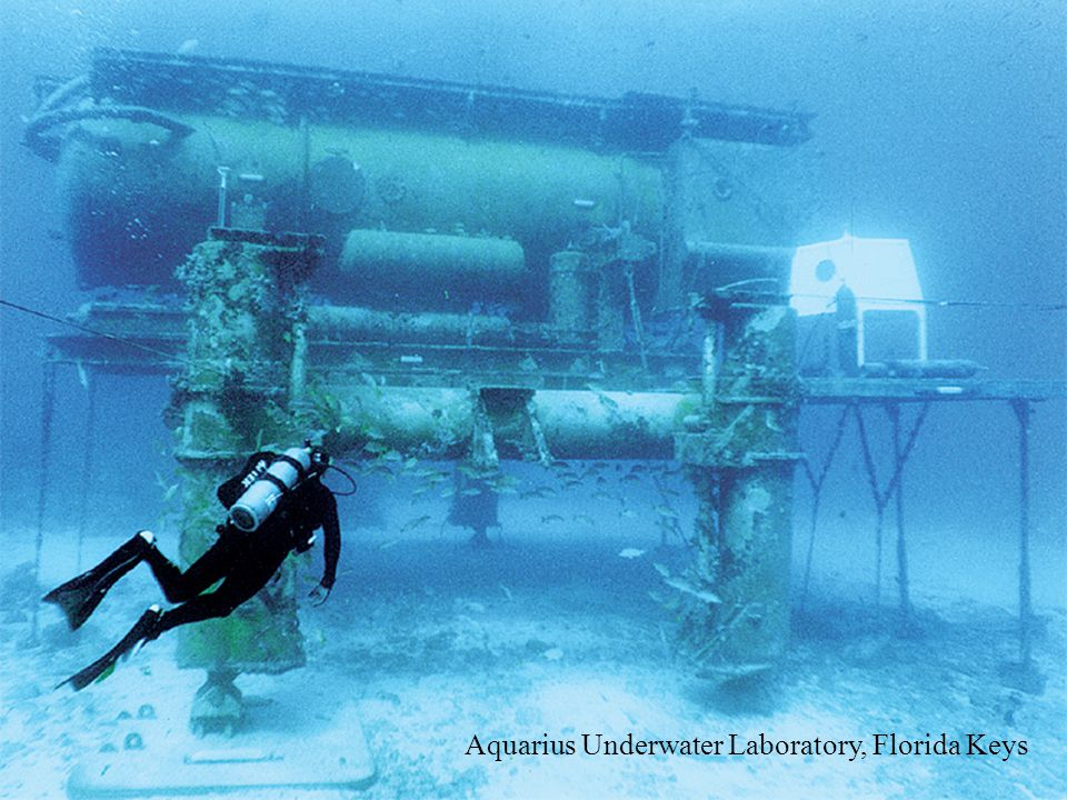 Aquarius Underwater Laboratory, Florida Keys