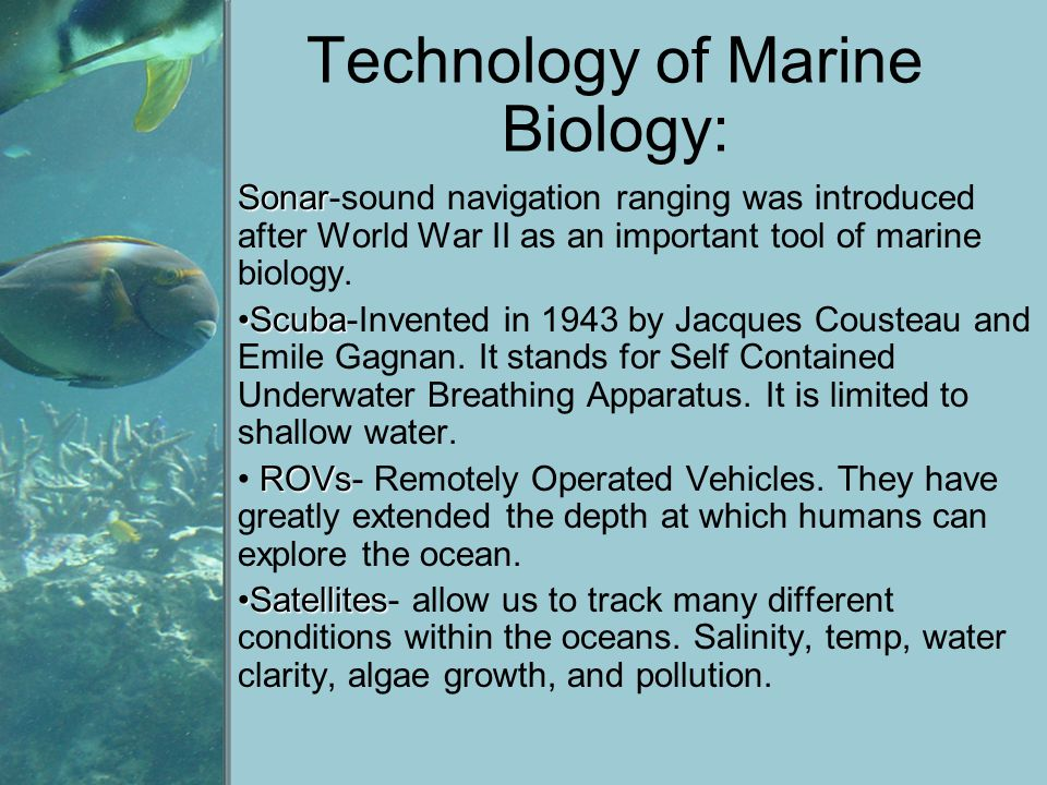 Technology of Marine Biology: