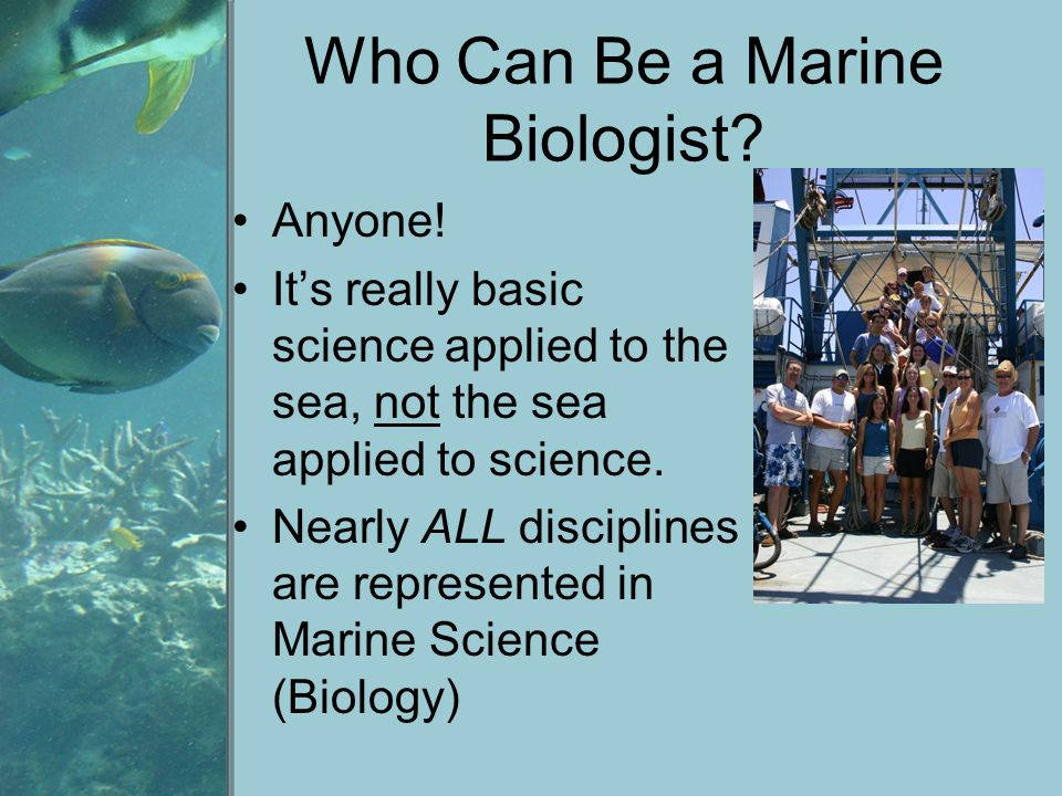 Who Can Be a Marine Biologist