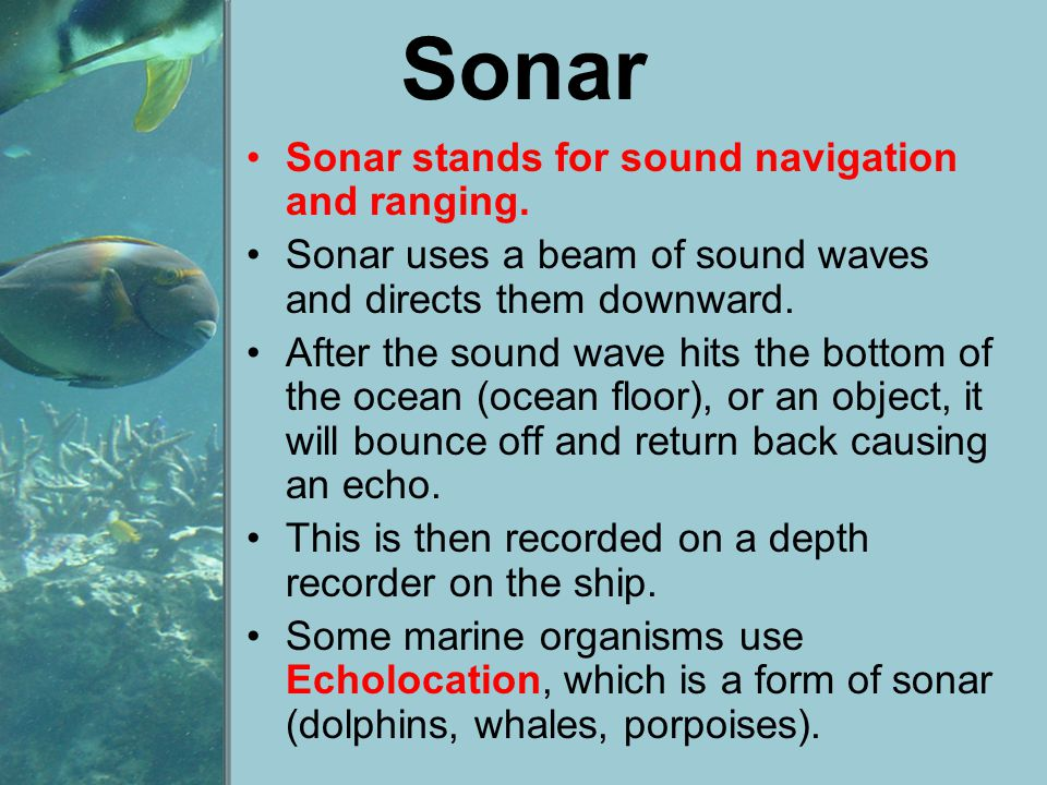 Sonar Sonar stands for sound navigation and ranging.
