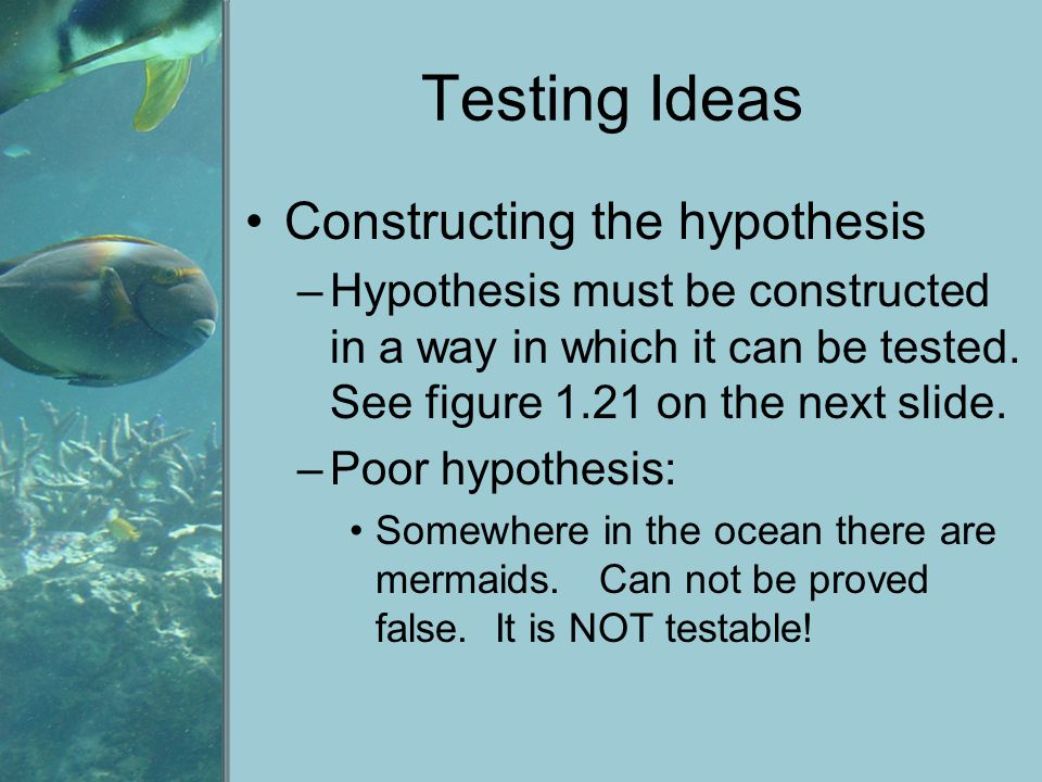 Testing Ideas Constructing the hypothesis