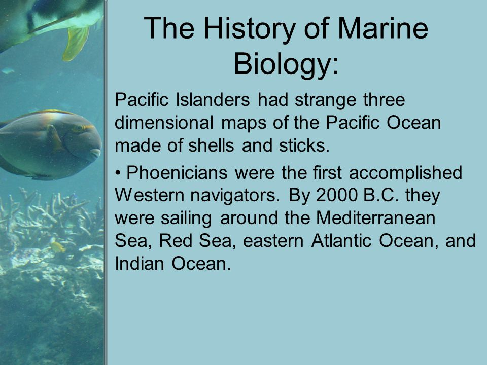 The History of Marine Biology: