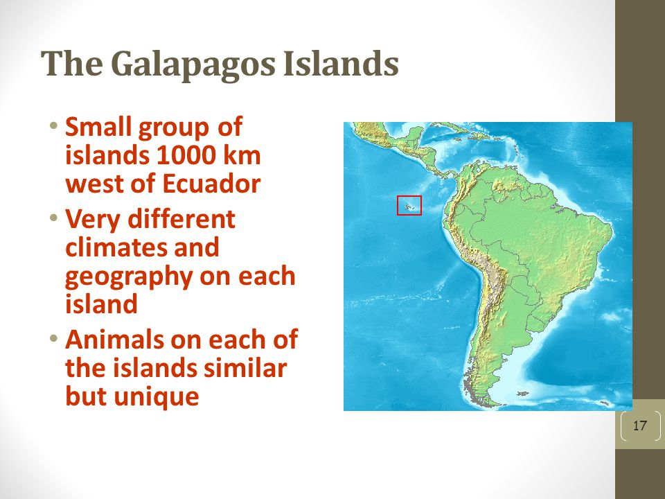 The Galapagos Islands Small group of islands 1000 km west of Ecuador