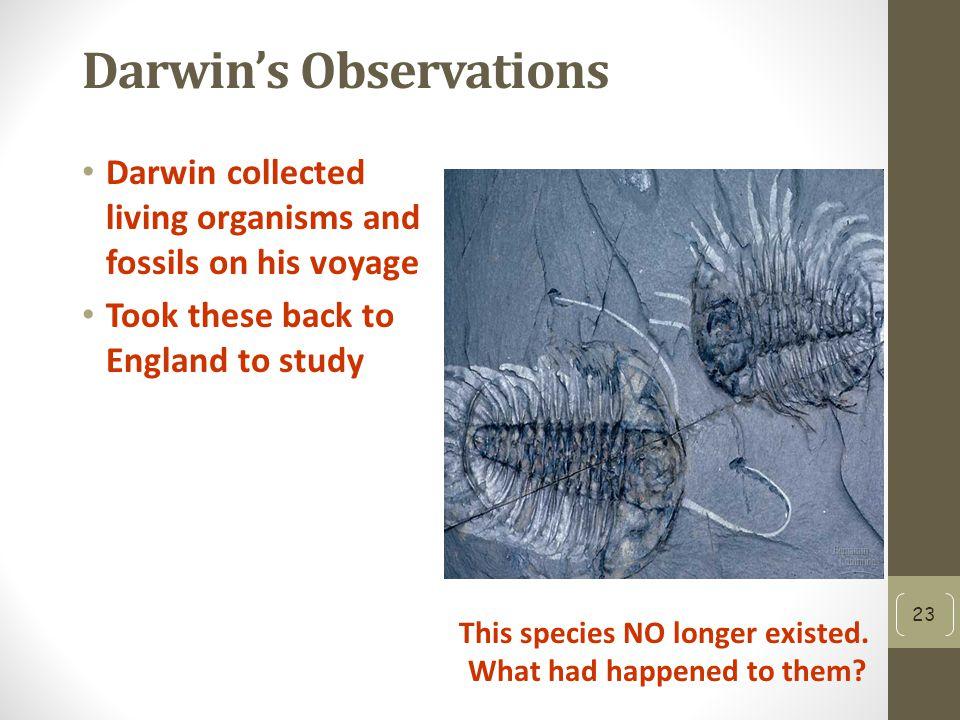 The Evolution of Charles Darwin | Science | Smithsonian