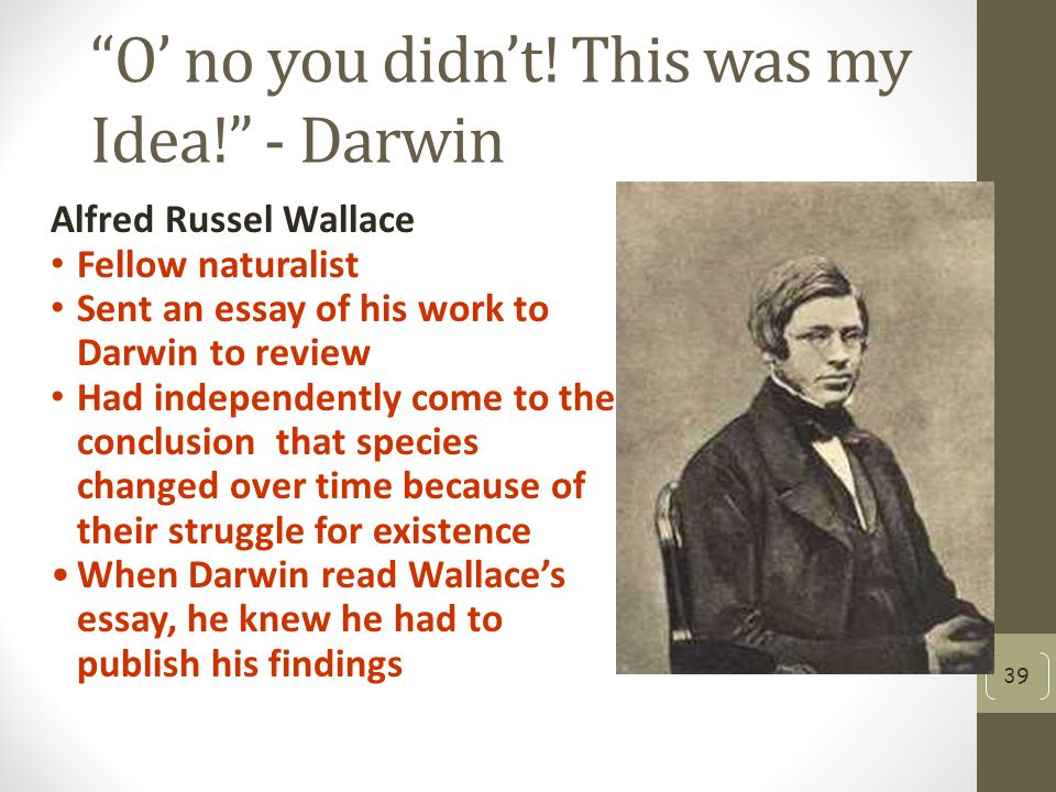 O' no you didn't! This was my Idea! - Darwin