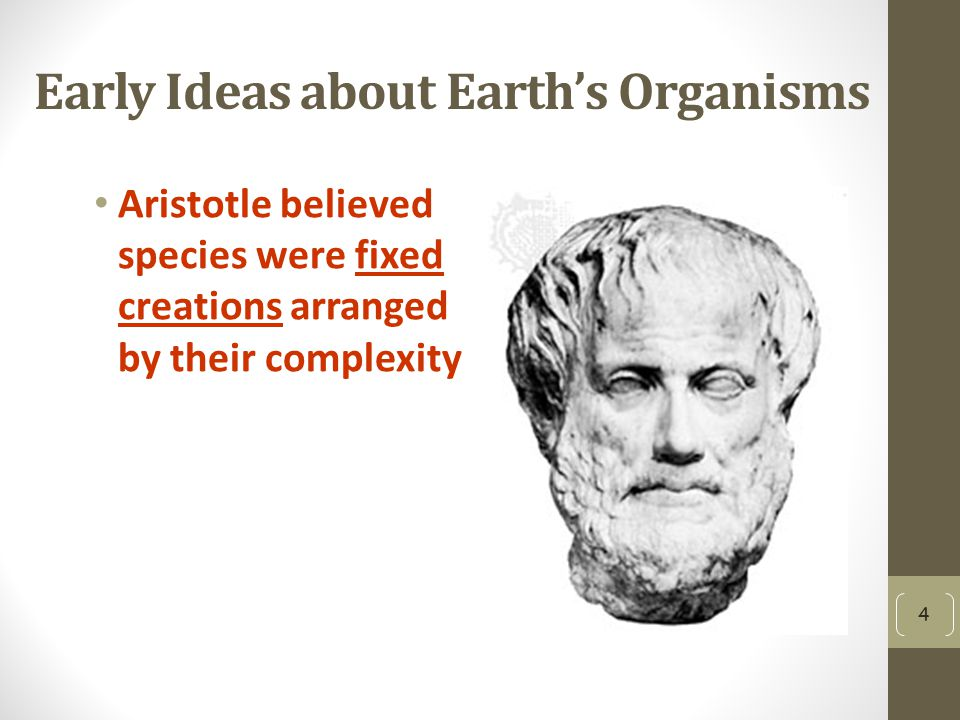 Early Ideas about Earth's Organisms