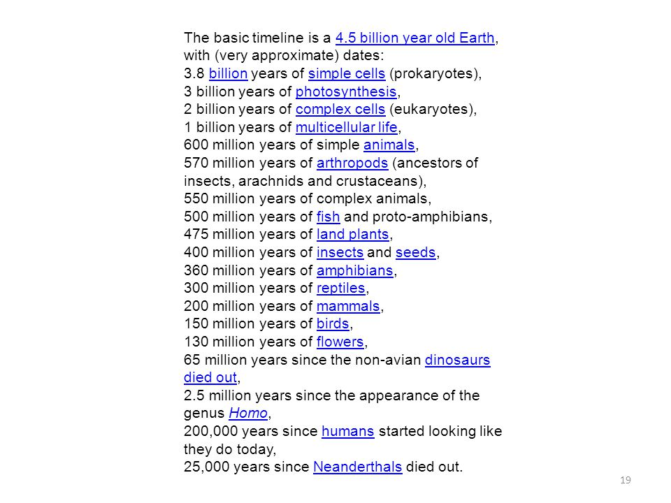 The basic timeline is a 4.5 billion year old Earth, with (very approximate) dates: