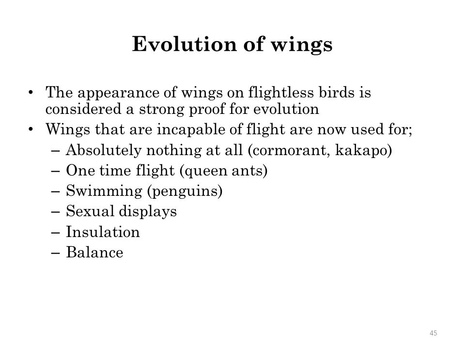 Evolution of wings The appearance of wings on flightless birds is considered a strong proof for evolution.