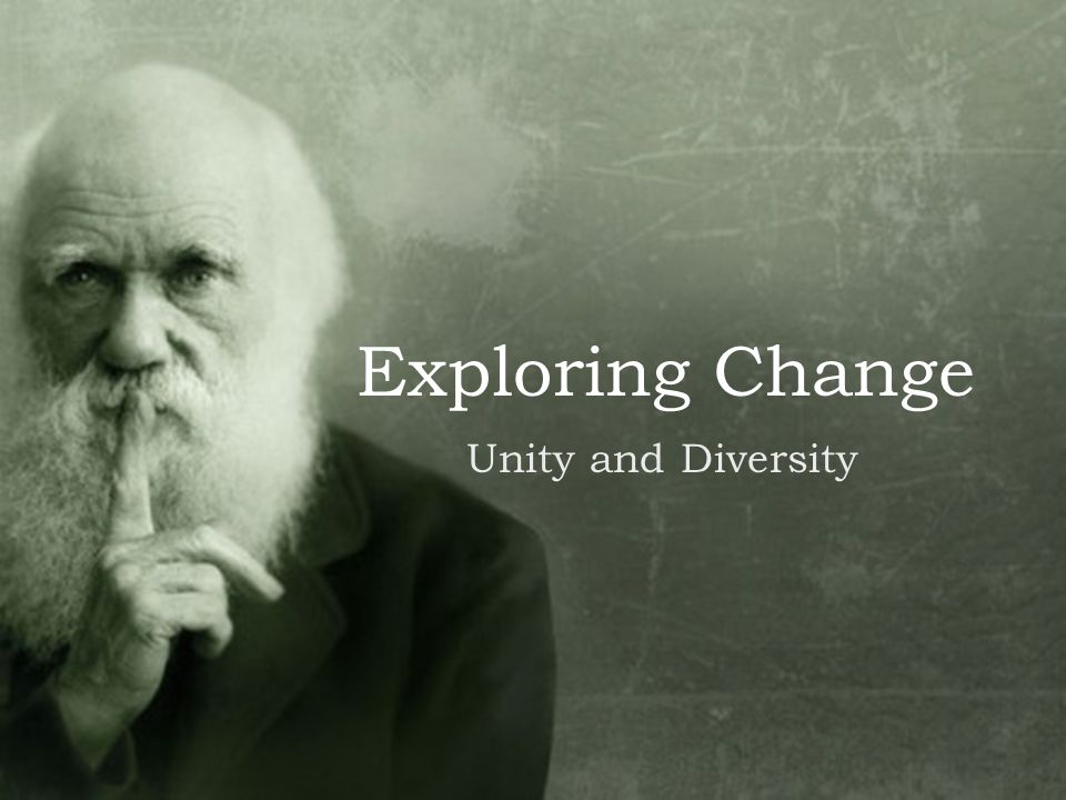 Exploring Change Unity and Diversity