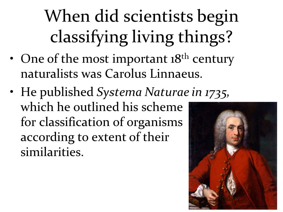 When did scientists begin classifying living things