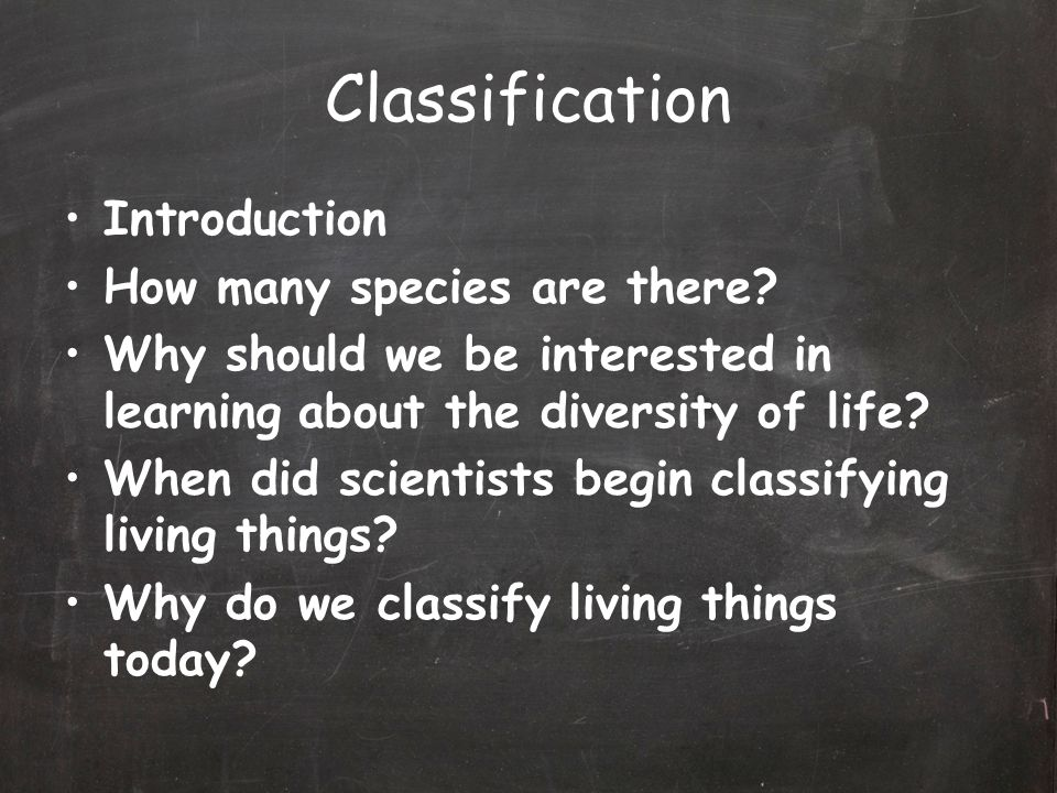 Classification Introduction How many species are there