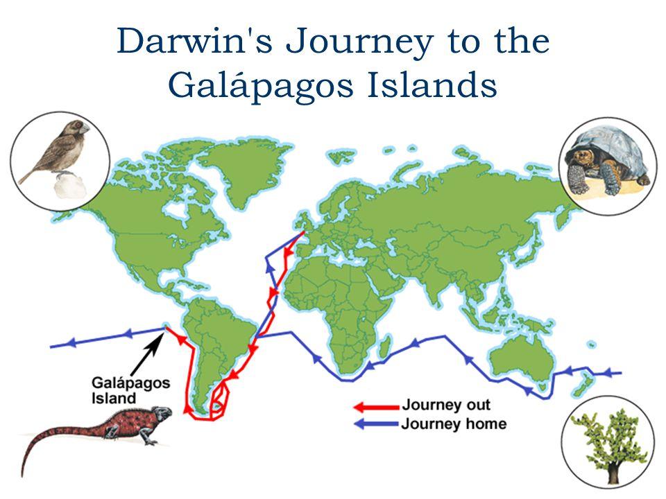 Darwin s Journey to the Galápagos Islands