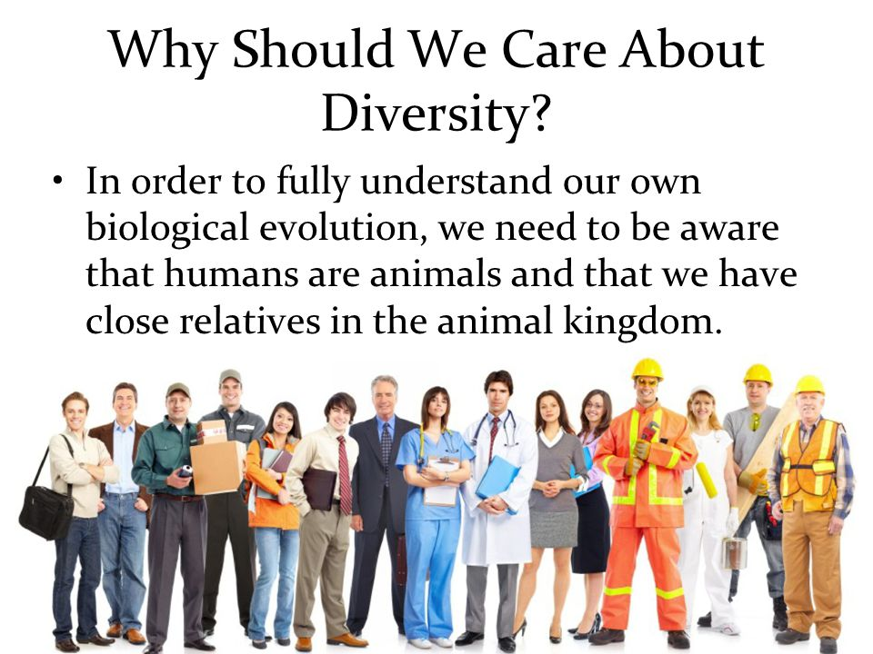 Why Should We Care About Diversity