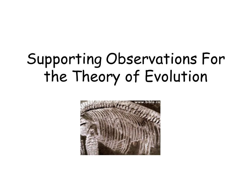 Supporting Observations For the Theory of Evolution
