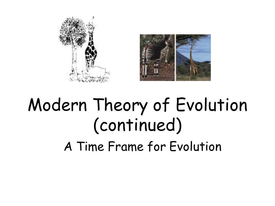 Modern Theory of Evolution (continued) A Time Frame for Evolution
