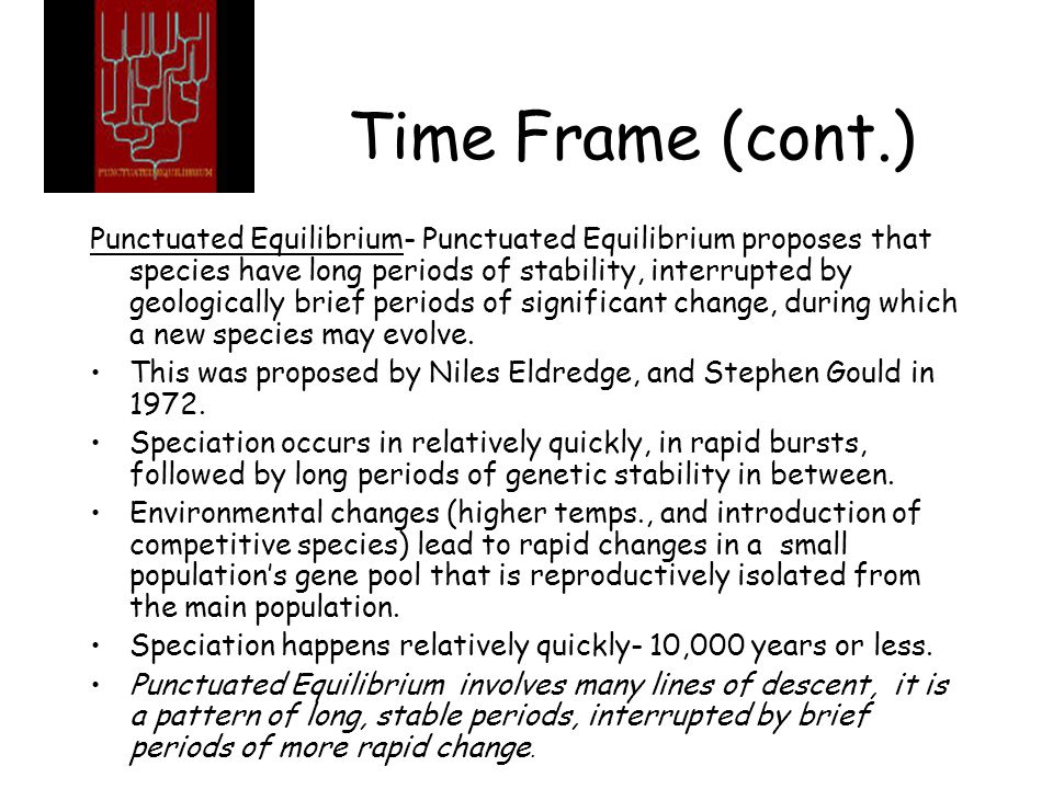 Time Frame (cont.)