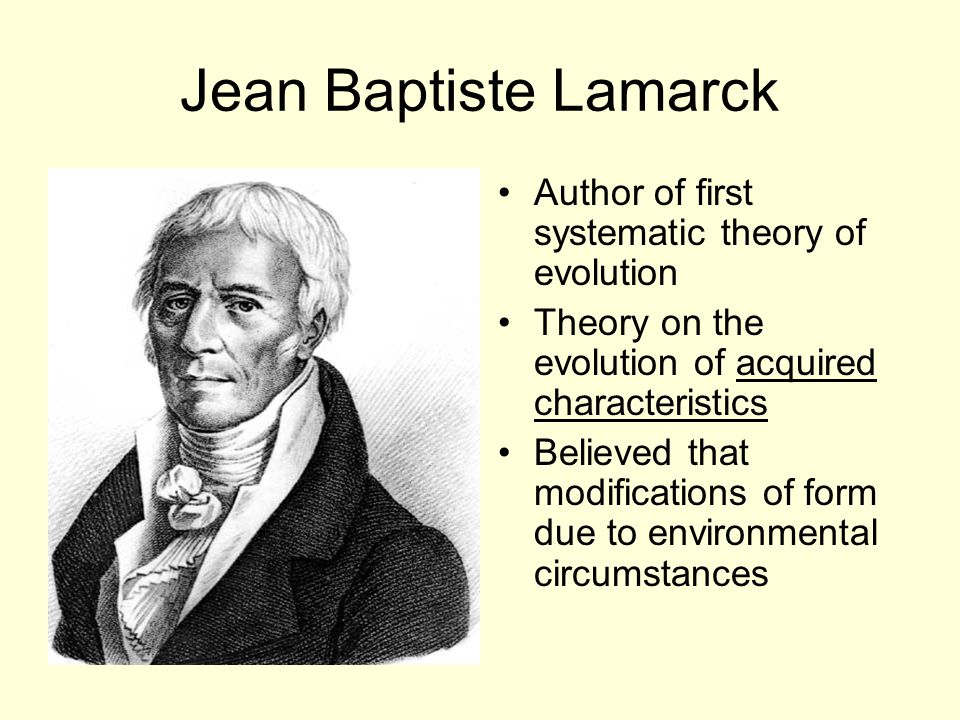 Jean Baptiste Lamarck Author of first systematic theory of evolution