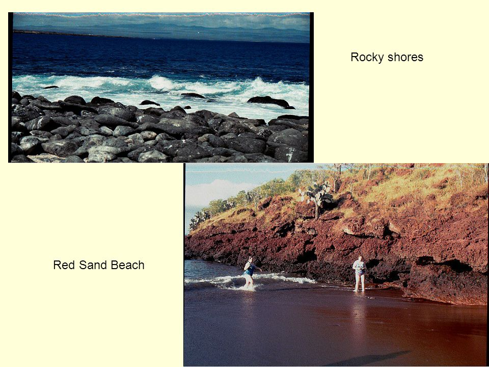 Rocky shores Red Sand Beach