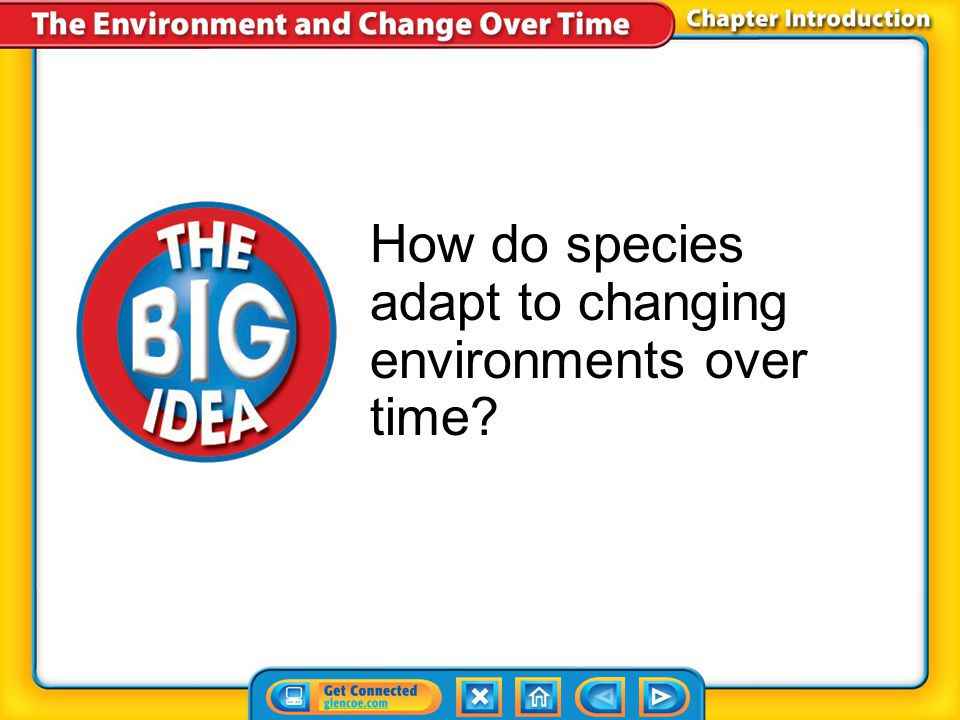 How do species adapt to changing environments over time