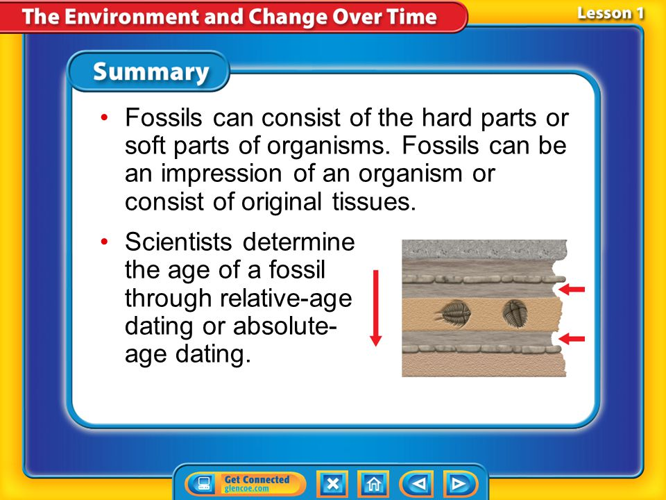 Fossils can consist of the hard parts or soft parts of organisms