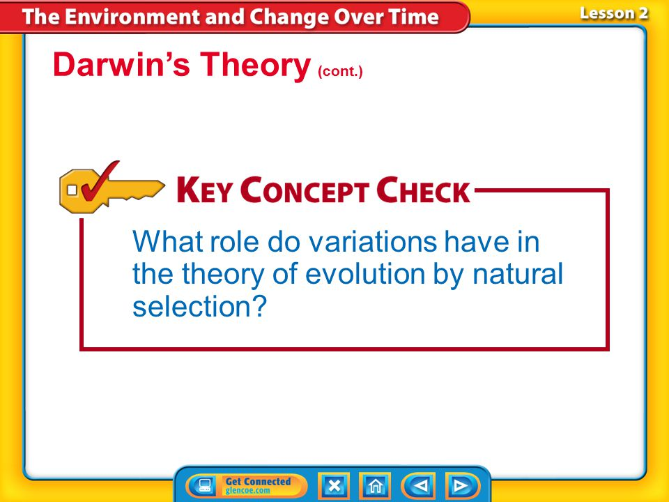 Darwin's Theory (cont.)