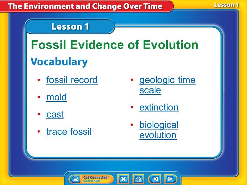 Lesson 1 Reading Guide - Vocab